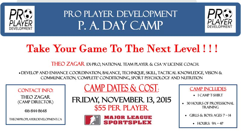 PPD-CAMP-2015-PA-DAY-NOV-POSTER-800
